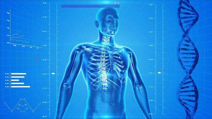Making Musculoskeletal Health a Global Priority
