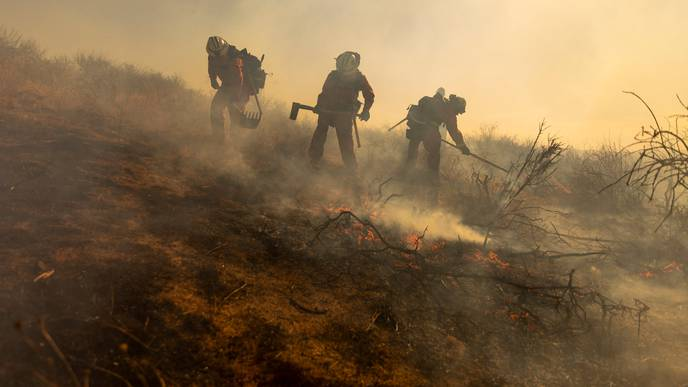 What to Know About Wildfire Smoke & COVID-19