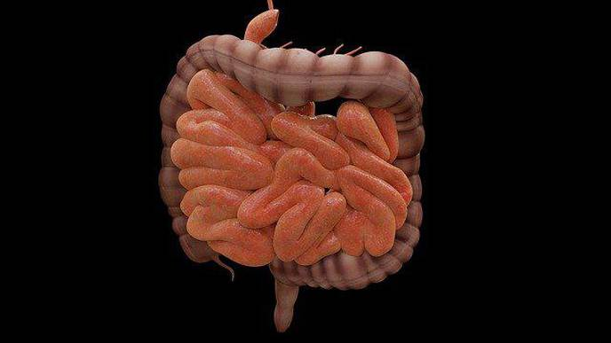 Treatment for Inflammatory Bowel Disease Doesn't Always Work