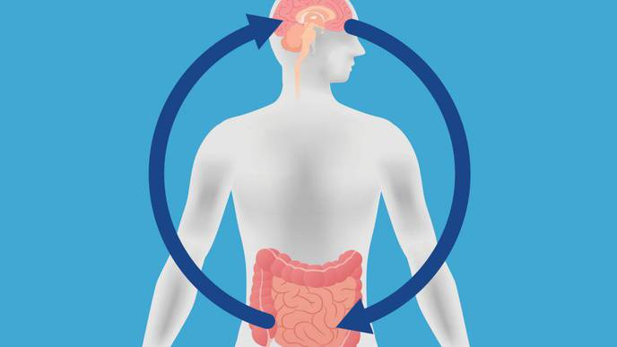 Researchers Unravel Clues about Rare & Misdiagnosed Gastrointestinal Disorder