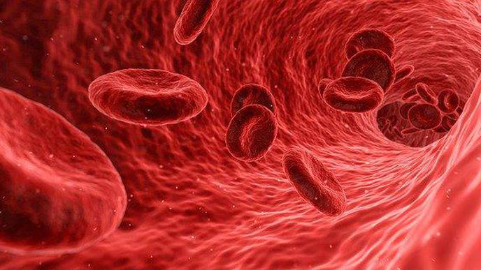 Virus in the Blood Can Predict Severe COVID-19